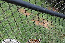 Tiger Creek Wildlife Refuge, Tyler, United States