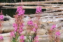 Duffey Lake Provincial Park, D'Arcy, Canada