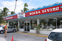 Key Dives, Islamorada, United States