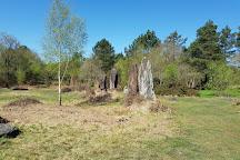 (Mégalithes) Menhirs De Monteneuf, Monteneuf, France