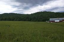 New England Falconry, Woodstock, United States