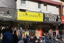Sugandhco, Lucknow, India
