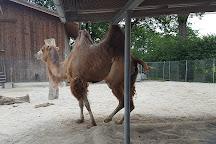 Toni's Zoo, Rothenburg, Switzerland