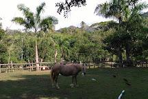 Hacienda la Suerte, Las Terrenas, Dominican Republic