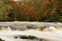 Cenarth Falls, Cenarth, United Kingdom