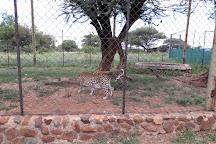 Predator World, Sun City, South Africa