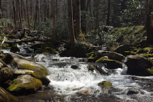 Noah Bud Ogle Cabin, Great Smoky Mountains National Park, United States