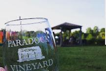 Paradocx Vineyard, Landenberg, United States
