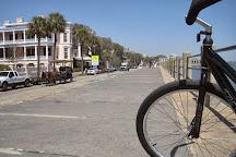 B's Bikes, Charleston, United States