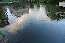 Komoike Park, Mishima, Japan