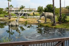 The La Brea Tar Pits and Museum