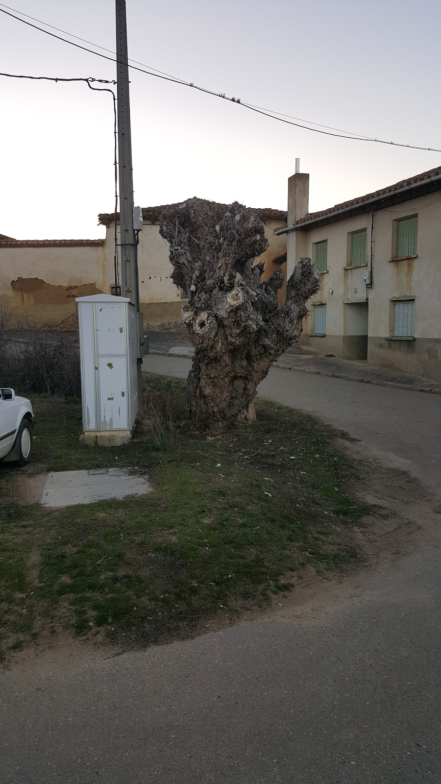 Villaverde de Arcayos