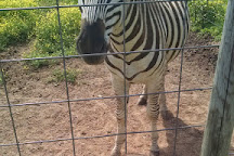 Purdy's Petting Zoo, Sweetwater, United States
