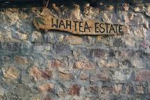 Wah Tea Estate, Palampur, India