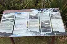 Peters Pool Walk, Franz Josef, New Zealand