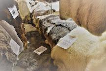 Ambleside Cowhides and Sheepskins, Ambleside, United Kingdom