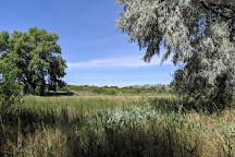 Leonora Curtin Wetland Preserve, Santa Fe, United States