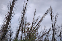 Dolgaya Spit, Dolzhanskaya, Russia