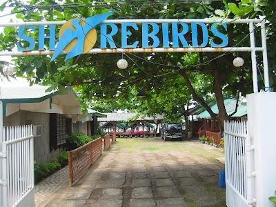 Shorebirds Beach Resort Nasugbu Batangas No Swimming Pool Batangas Phone 63 2 563 7071