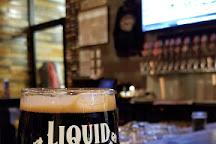 Liquid Mechanics, Lafayette, United States