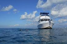 Sail Fish Scuba, Key Largo, United States