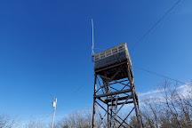 Ossipee Hill Summit, Waterboro, United States