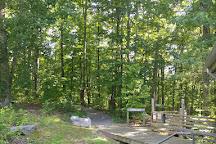 Beaman Park Nature Center, Nashville, United States
