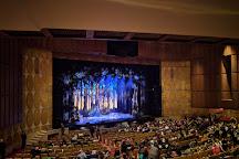 Fisher Theatre, Detroit, United States