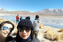 Laguna Hedionda, Uyuni, Bolivia
