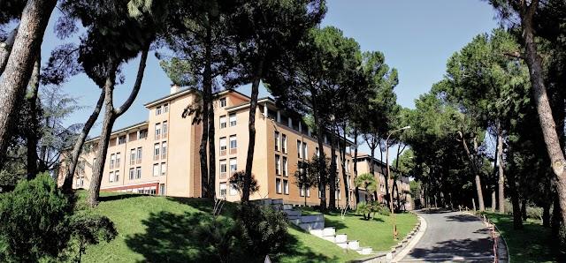 Université Nicolas-de-Cues