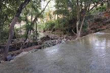 Khoai Mela, Bolpur, India