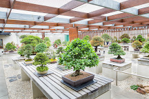 National Bonsai & Penjing Collection, Molonglo Valley, Australia