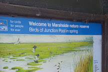 RSPB Marshside, Southport, United Kingdom