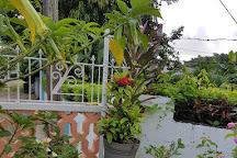 Harmony Hall Art Gallery, Ocho Rios, Jamaica