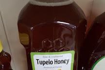 Smiley Honey, Wewahitchka, United States