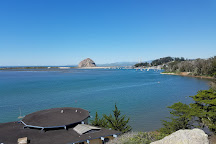 Museum of Natural History, Morro Bay, United States