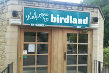 Birdland, Bourton-on-the-Water, United Kingdom