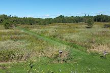 Great Swamp Conservancy, Canastota, United States