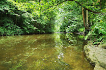 Plessey Woods Country Park, Bedlington, United Kingdom