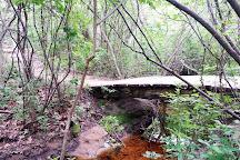 Cedar Tree Neck Sanctuary, West Tisbury, United States