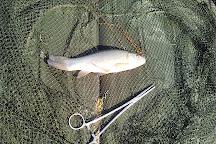 Straid Fishery, Ballyclare, United Kingdom
