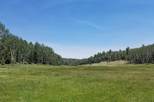 Bobcat Pass Wilderness Adventures, Red River, United States