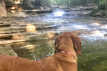 Tanyard Creek Nature Trail, Bella Vista, United States