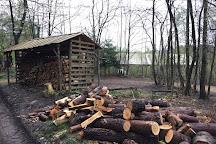 Wilderness Wood, Hadlow Down, United Kingdom