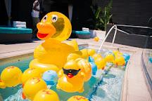 Liquid Pool Lounge, Las Vegas, United States