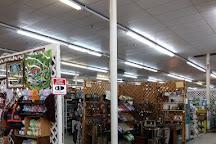 Bama Flea Mall & Antique Center, Leeds, United States