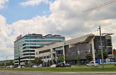Transica beograd atraktivna Beograd prepoznat