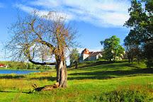 Svirzh Castle, Svirzh, Ukraine