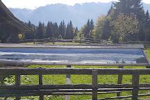 Planina Zajamniki, Srednja vas v Bohinju, Slovenia