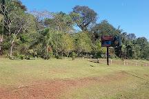 Guiraoga, Puerto Iguazu, Argentina